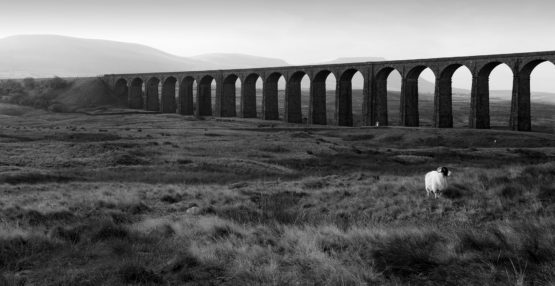 Ribblehead Viaduct limited edition print